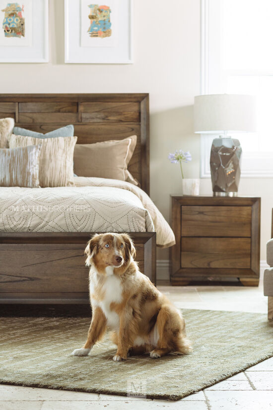 Four-Piece Contemporary Bedroom Set in Brown