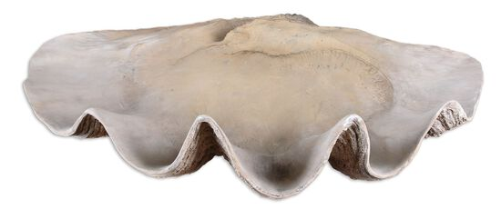 Clam Shell Bowl in Antique White