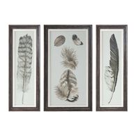 Uttermost Feather Study Prints, S/3