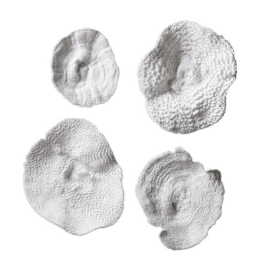 Four-Piece Textured Sea Coral Wall Art in Antique White