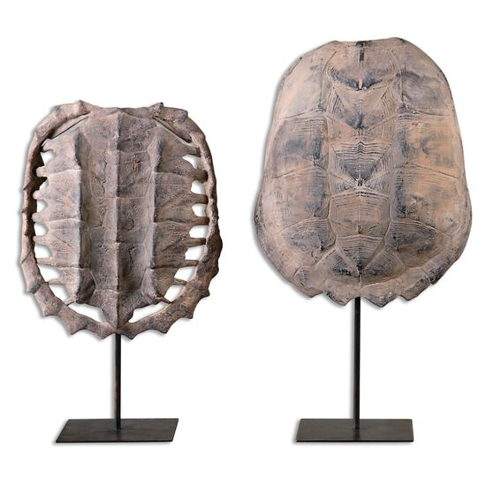 Two-Piece Turtle Shells