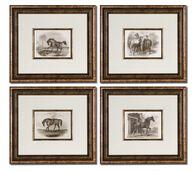 Uttermost Horses Framed Art Set/4