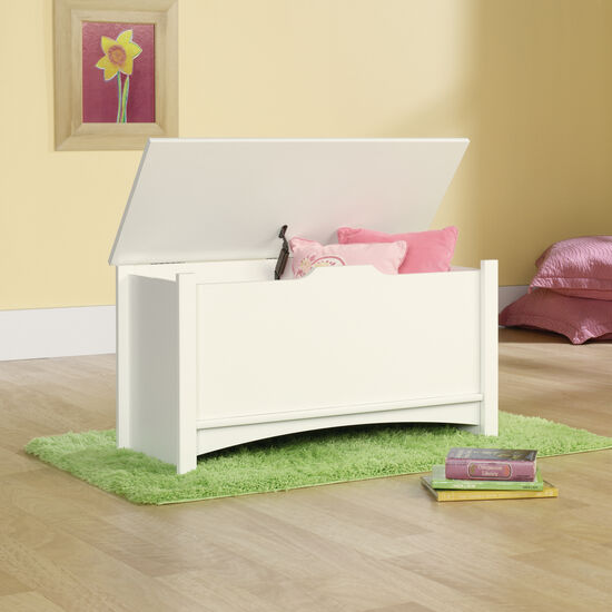 "19"" Transitional Square Storage Chest in Soft White"
