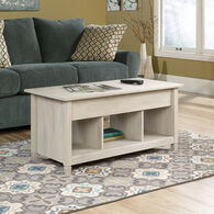 MB Home Lake Wood Chalked Chestnut Lift-Top Coffee Table