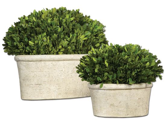 Oval Dome Planters in Mossy Stone
