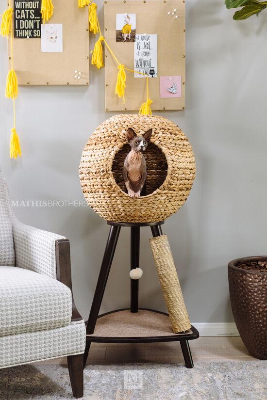 Modern Sphere Cat Towerin Espresso