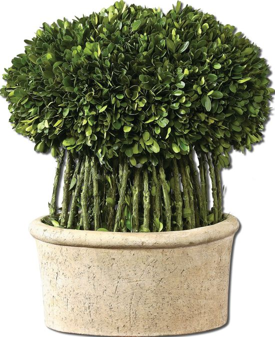 Topiary Planter in Mossy Stone