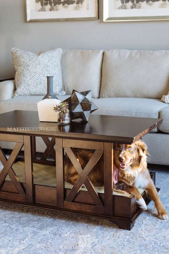 X-Brace Contemporary Coffee Table Pet Bed in Espresso