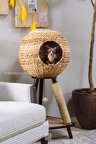MB Home Golden Gate Espresso Natural Sphere Cat Tower