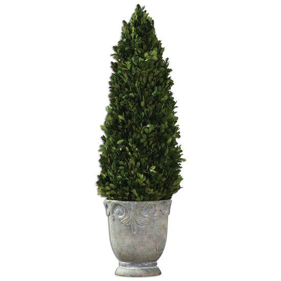 Cone Topiaryin Light Stone