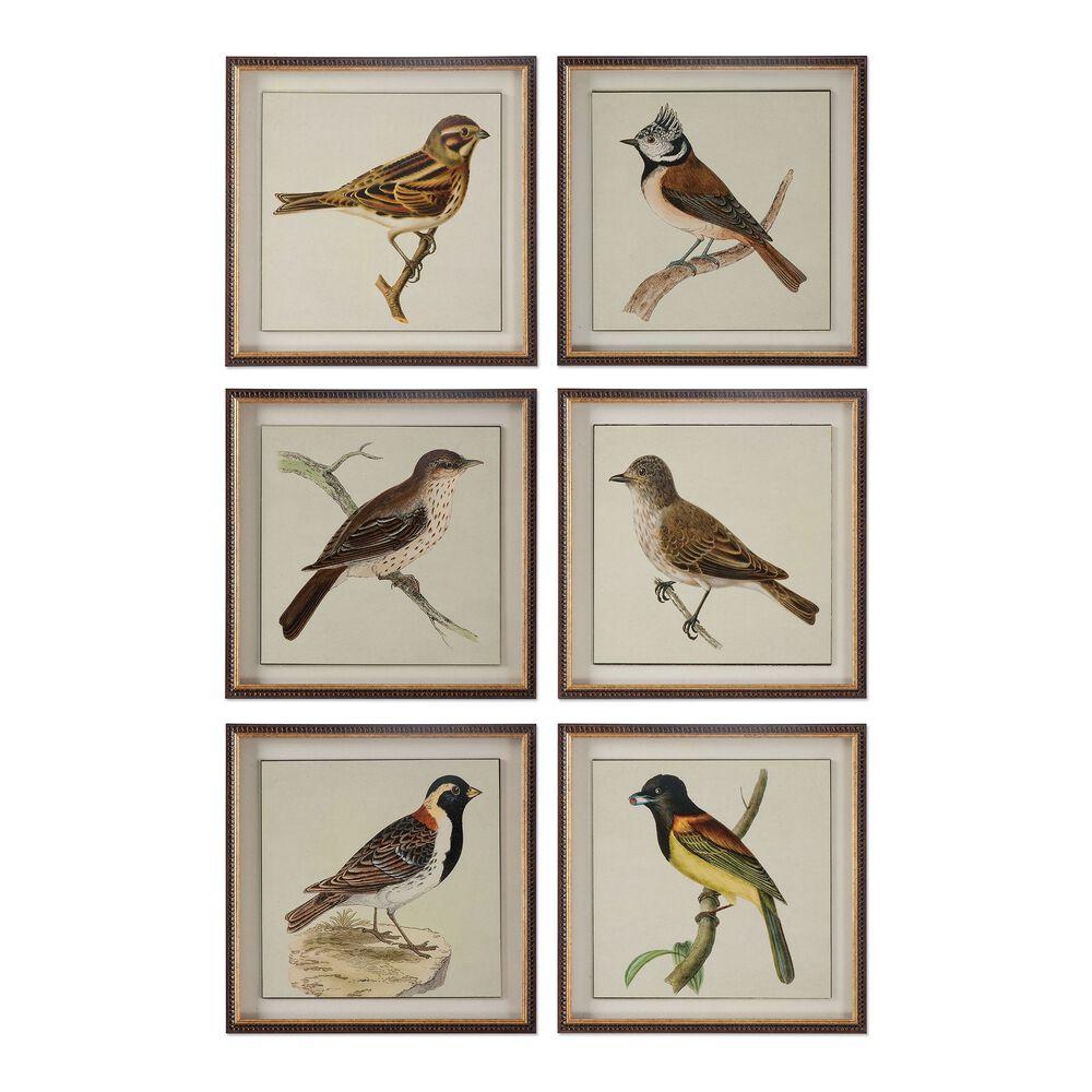 Six-Piece Framed Bird Printed Wall Art Set
