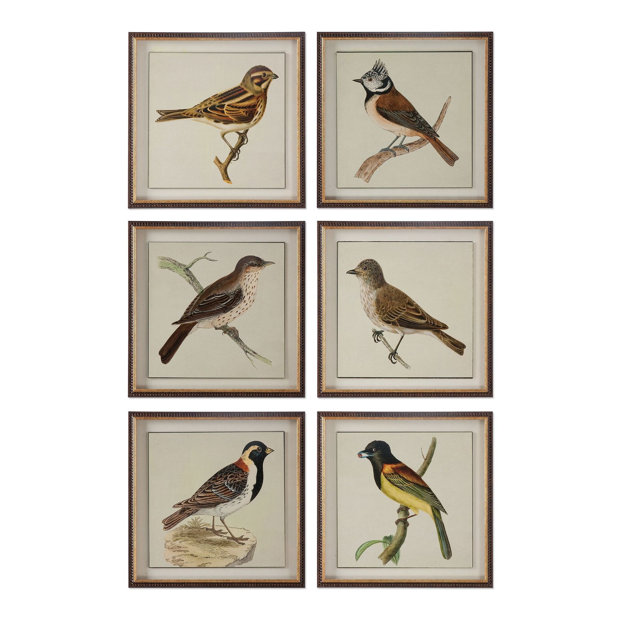 Eight-Piece Framed Bird Printed Wall Art Set | Mathis Brothers Furniture