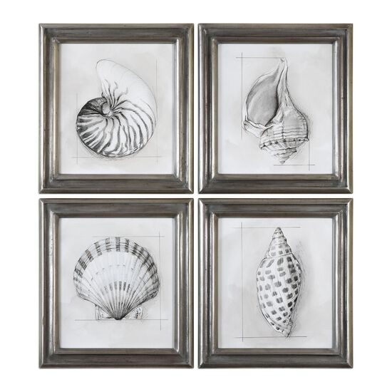 Four-Piece Shell Schematic Printed Framed Wall Art Set