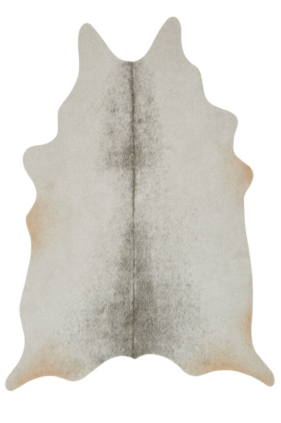 """Transitional 3'-10""""x5' Rug in Silver/Grey"""
