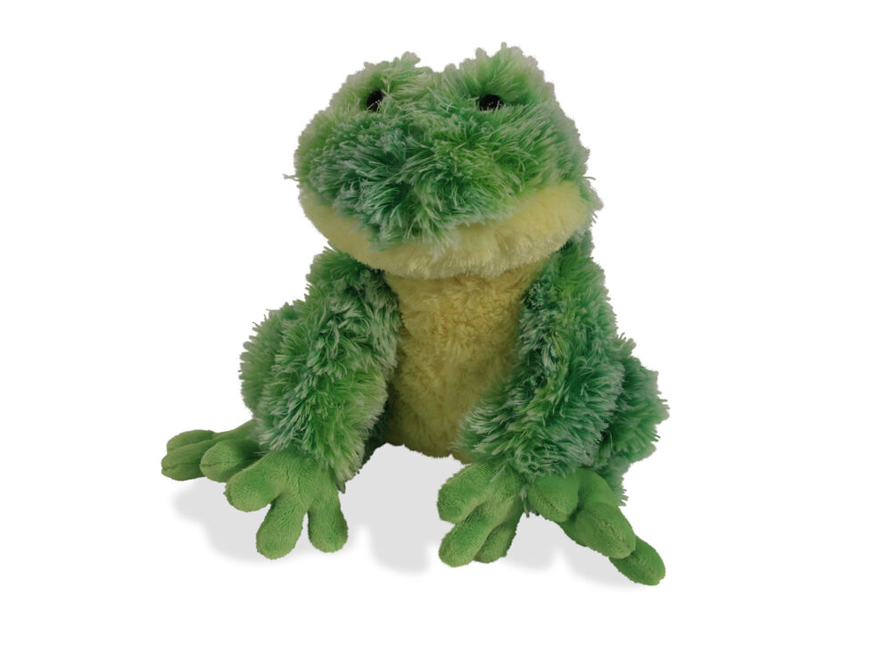 Fizzles Frothy Frog