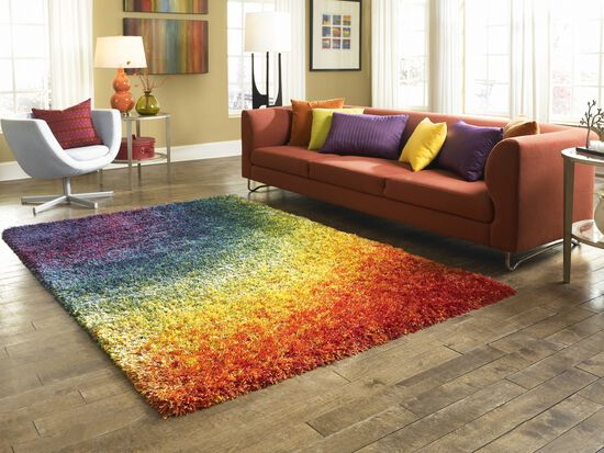 Shags Rug in Rainbow