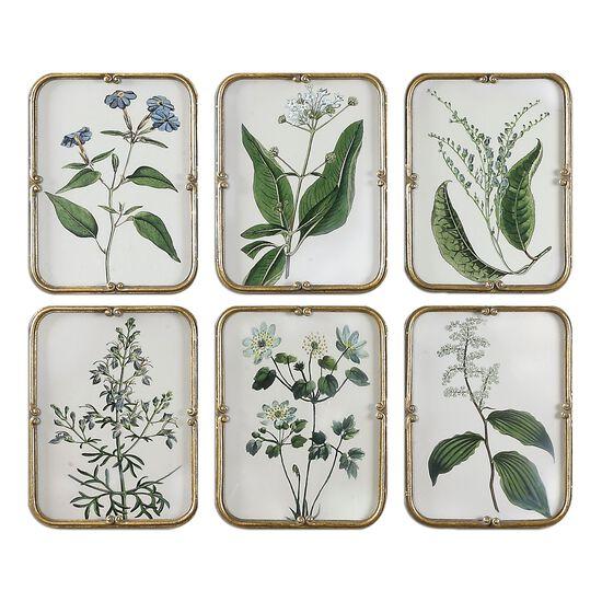 Six-Piece Floral Printed Framed Wall Art Set