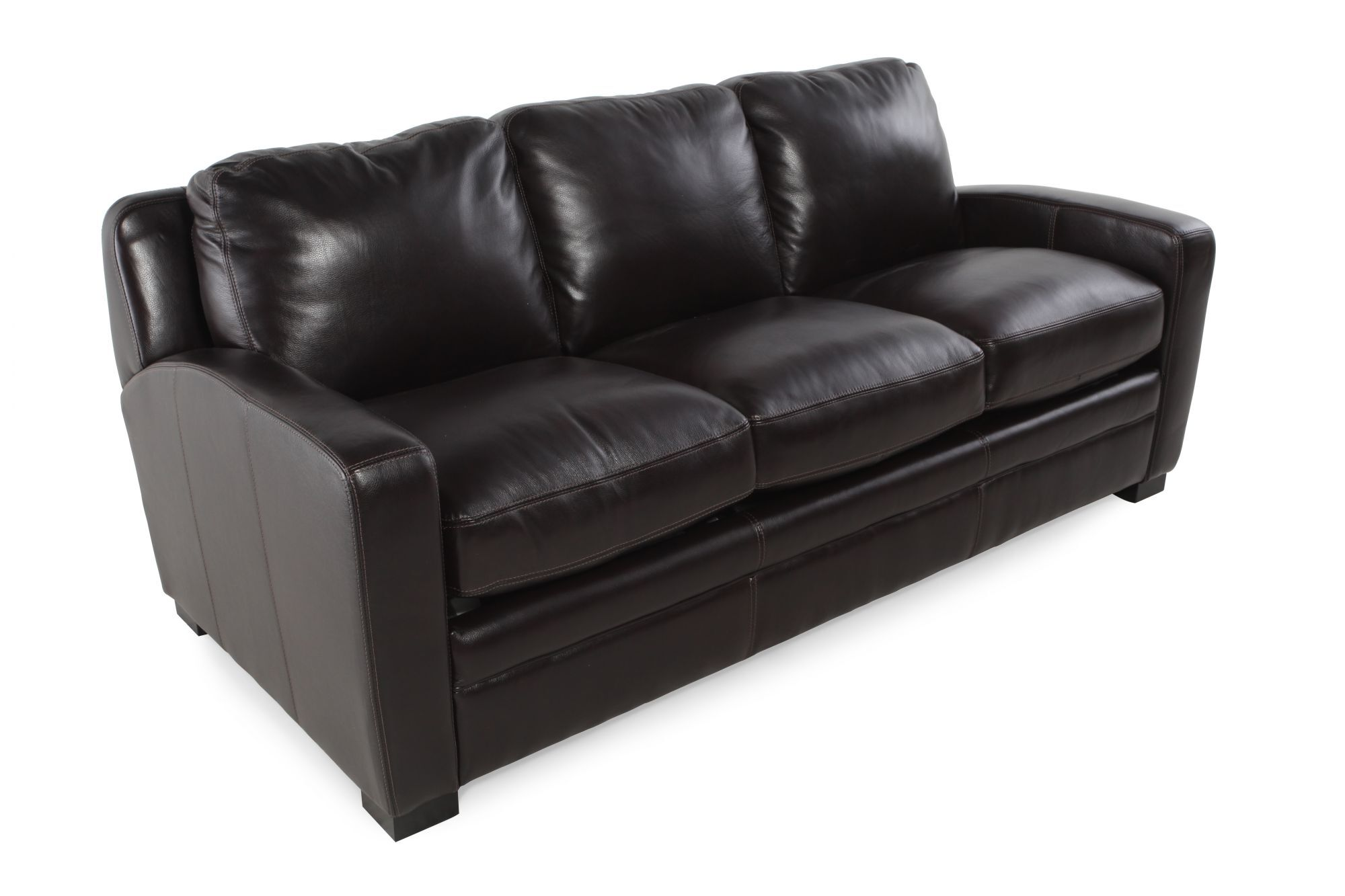 Traditional Leather Queen Sleeper Sofa In Black