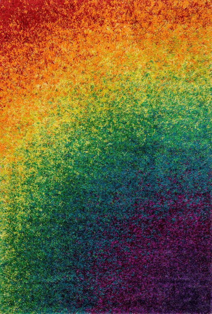Shags Rug in Rainbow