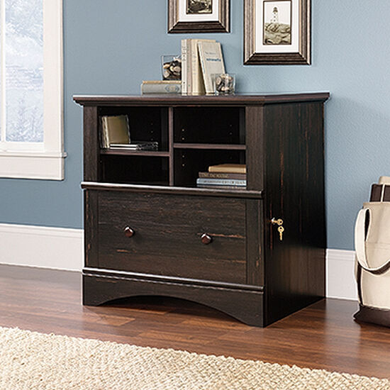 Cubbyhole Transitional Lateral File Cabinet in Dark Brown