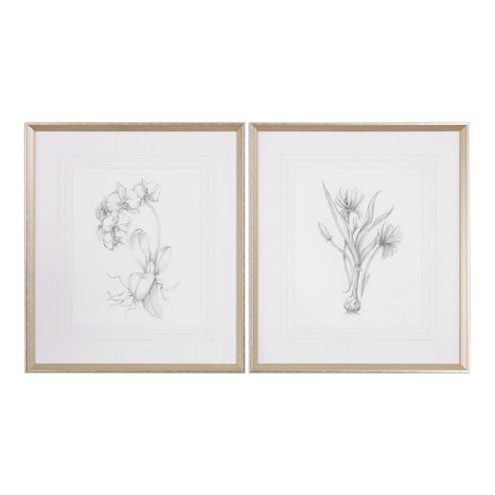 Two-Piece Framed Botanical Sketches Printed Wall Art Set