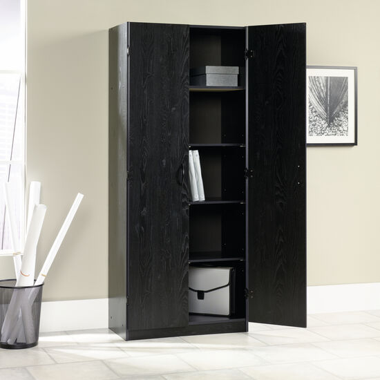 Two-Door Transitional Storage Cabinet in Ebony Ash