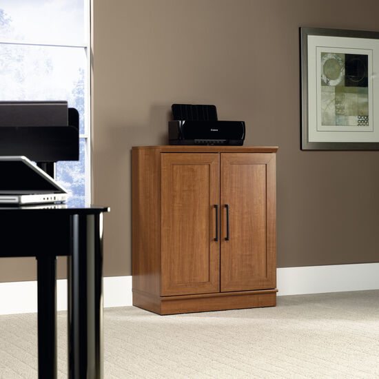 Two-Door Contemporary Base Cabinet in Sienna Oak
