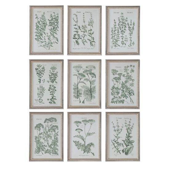 Nine-Piece Framed Herb Garden Wall Art Set