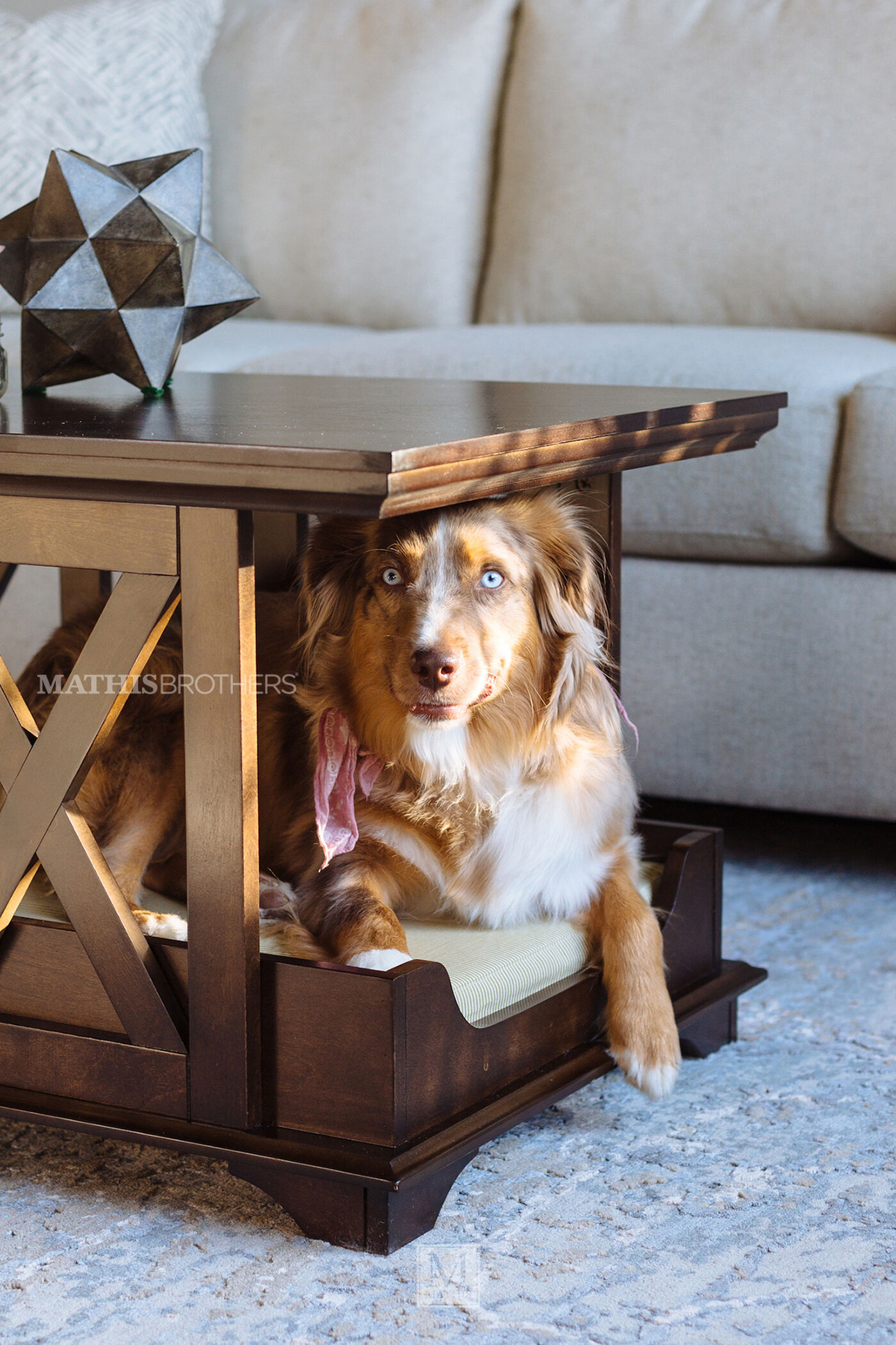 Fantastic X-Brace Contemporary Coffee Table Pet Bed in Espresso | Mathis  JF78