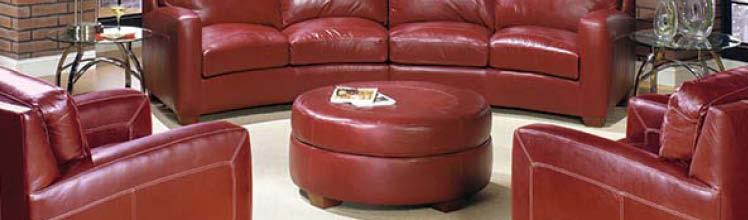 Usa Furniture Leather